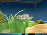 FishingOn091.jpg