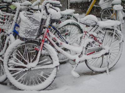 雪の日の自転車