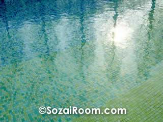 水面に映ったメタセコイアの木陰