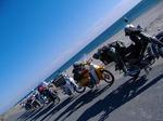 海岸だよ、全員集合!!