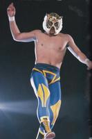 2代目タイガーマスク