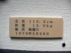 0154.jpg