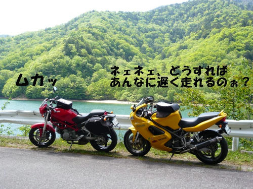 ST002.jpg