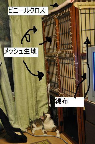 b_DSC_0002.jpg