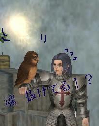 フクロウ♪