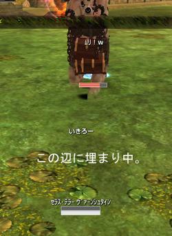 1ddcd21d.jpg