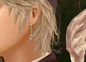 ロルクに銀耳。(*´Д`)