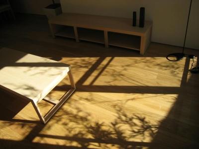 竹のシルエット