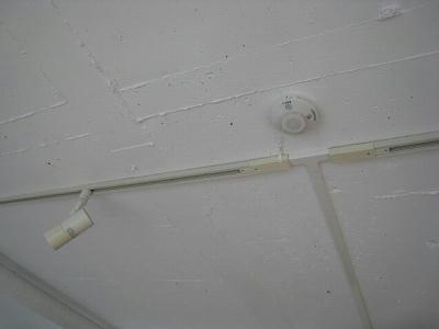 天井抜いてペイントのみの仕上げです。