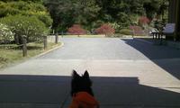 菅刈公園の和館