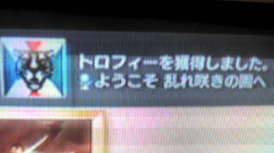 F1000486.JPG