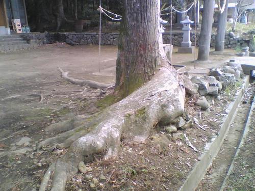 2008_0229_028.jpg