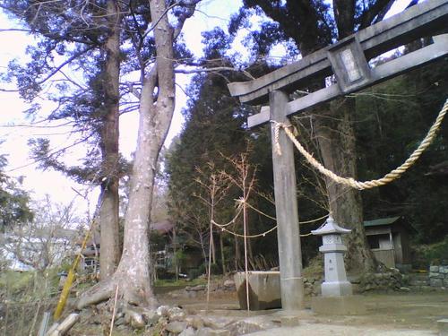 2008_0229_032.jpg