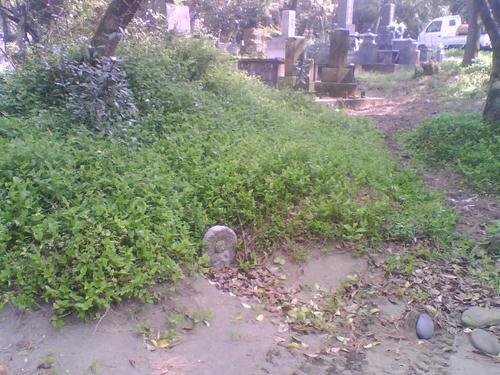 2009_0403_081.jpg
