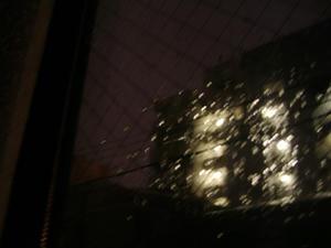 早朝から雨