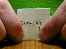 チビ水中花もうひとつ! tomcatさん