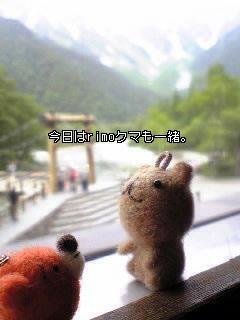 ウゲロとrimoクマさん