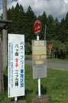 yatumori6.JPG