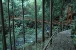 kowada26.jpg