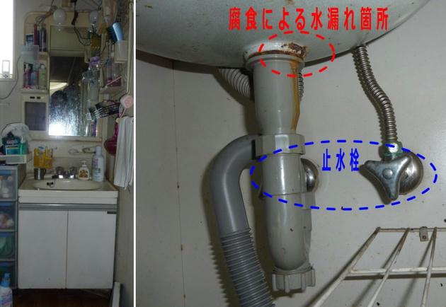 20110611_101.jpg
