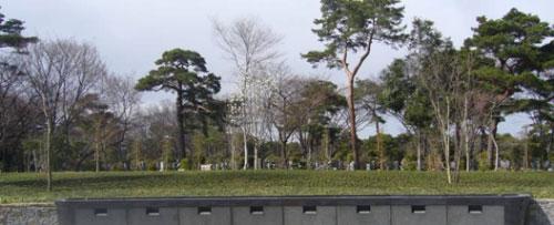 jurinbochi.jpg