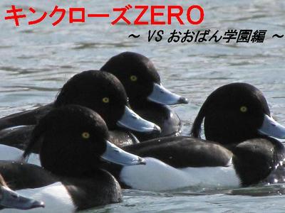 kinkurohajiro01.JPG
