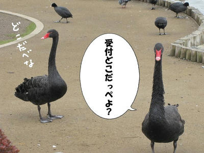 kokuchou05.JPG
