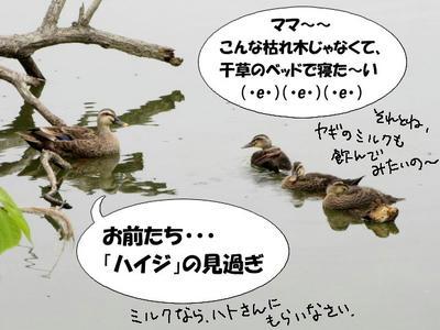 karu-hina05.jpg