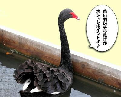 kokuchou03.jpg