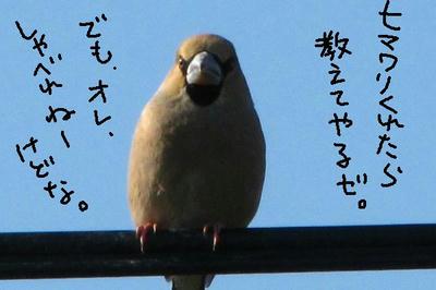 IMG_3551.jpg