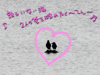 IMG_3894.jpg