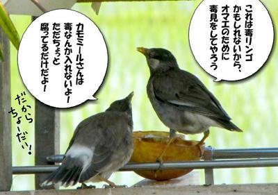 IMG_1003.jpg
