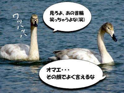 IMG_2259.JPG
