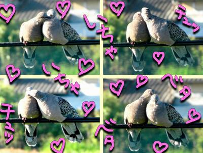 lovelove.jpg