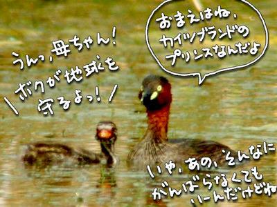 kairubuoyako.jpg