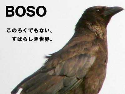boso.jpg