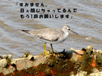 IMG_5768.jpg
