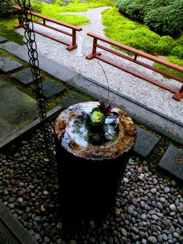 shibuonsen081213_003.jpg