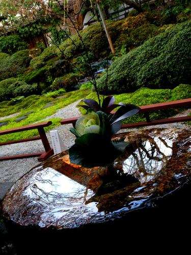 shibuonsen081213_005.jpg