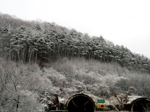 shibuonsen081213_033.jpg