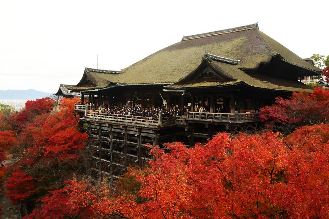 カレンダー カレンダー 2ヶ月表示 : 京都紅葉2011DAY1/13 ...