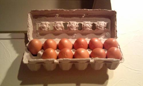 にんにく 卵料理