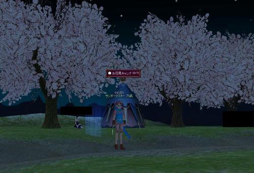夜桜はきれいです