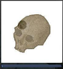 化石復元1