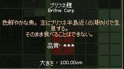 100cm.jpg