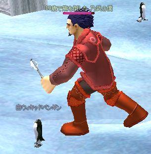 ペンギンが可哀想なんですけど