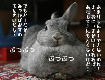 20091125_02.jpg