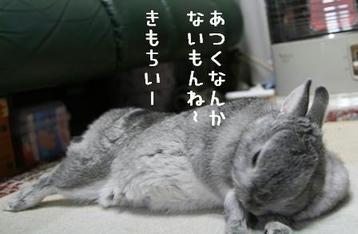20091127_03.jpg