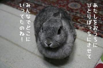 20091201_01.jpg