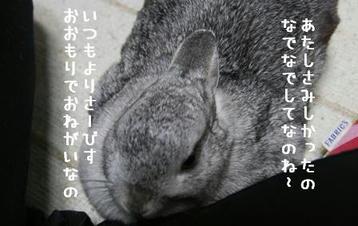 20091201_02.jpg
